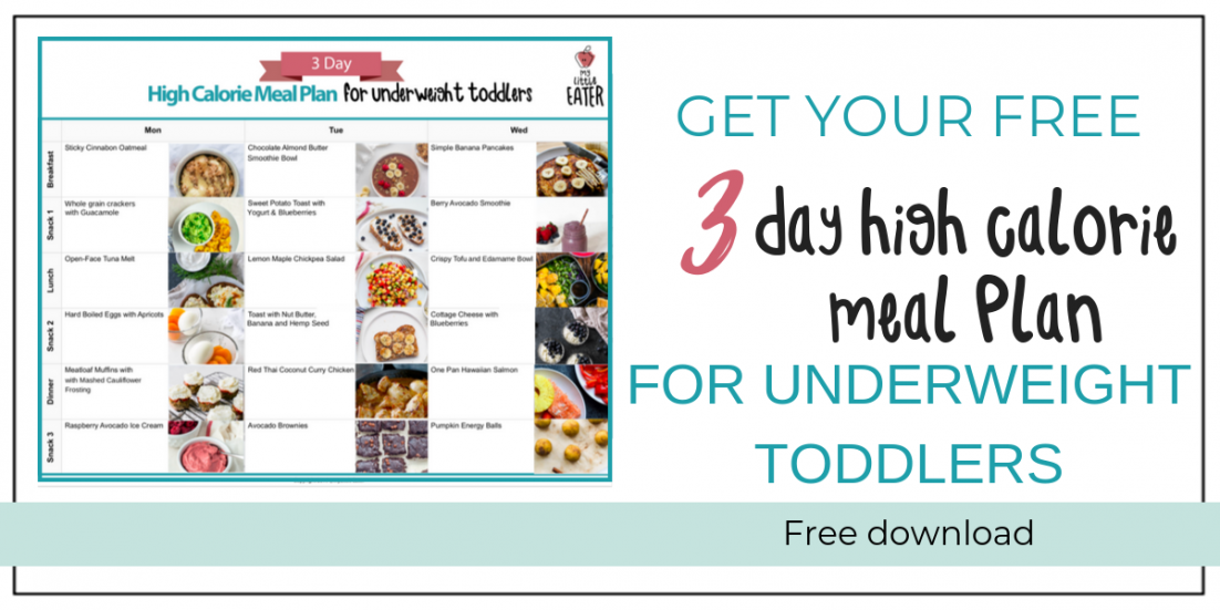 High calorie Meal plan underweight toddler