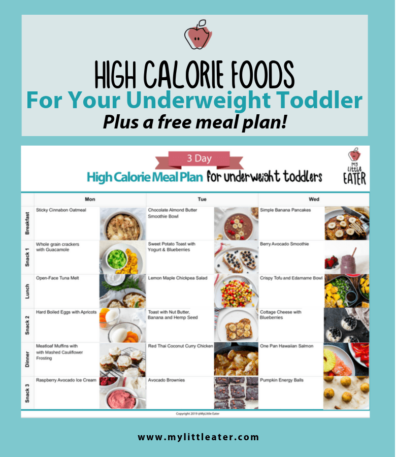 High Calorie Foods to Help your underweight toddler