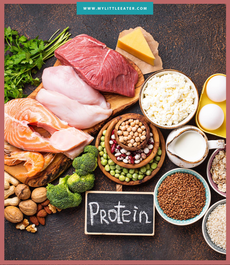 "image includes various proteins including: salmon, chicken, beans, cheese, eggs, broccoli, milk, and nuts, with a chalkboard below the food that says ""protein"""