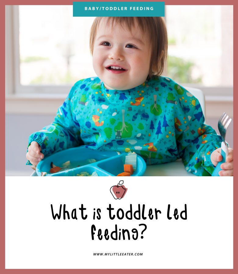 what is toddler led feeding?