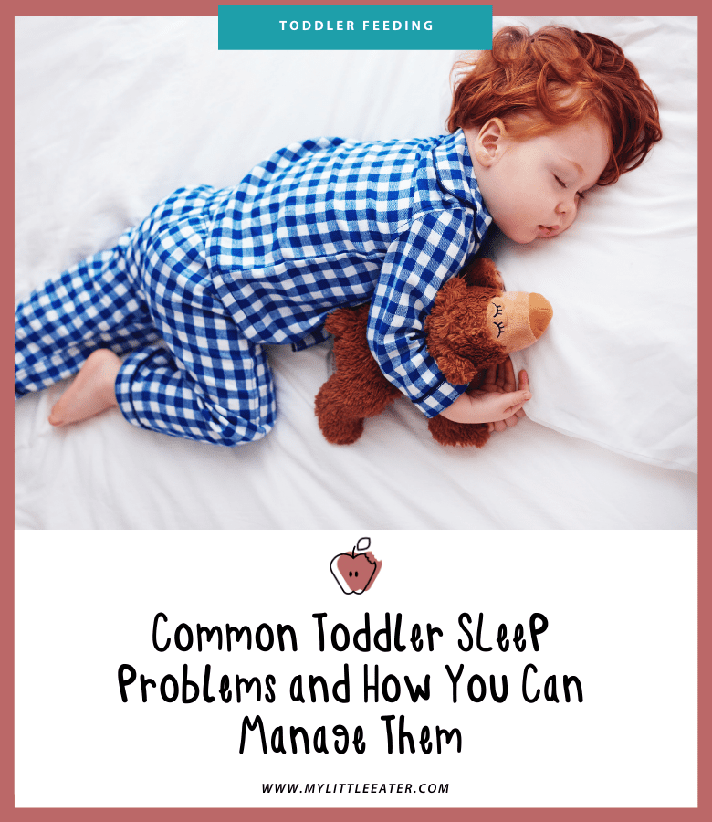 "Main image for the article ""Common Toddler Sleep Problems and How You Can Manage Them"". Pictured is a sleeping toddler cuddling their teddy bear."