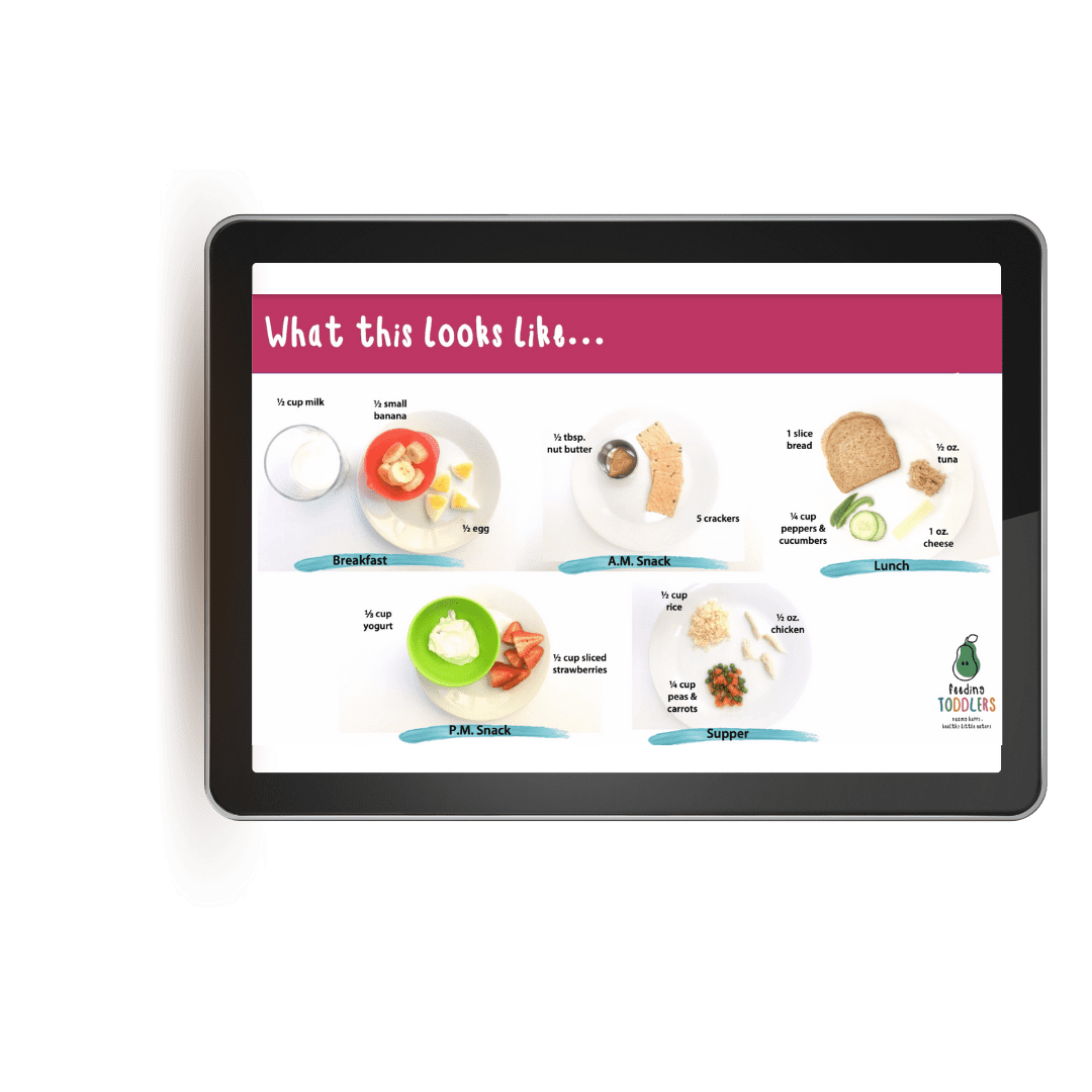 Feeding Toddlers online course lesson on what to feed toddlers for meals